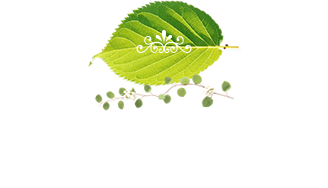 Peripheral Map 周辺MAP