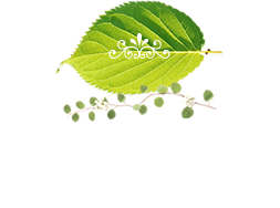 What's New 新着情報 ・ お知らせ