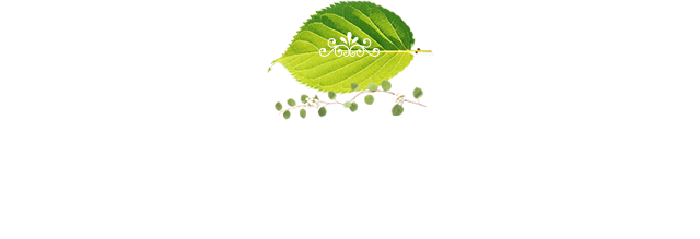What's New 新着情報 ・ お知らせ